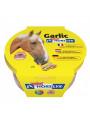 Lizawka Horslyx Garlic 650g