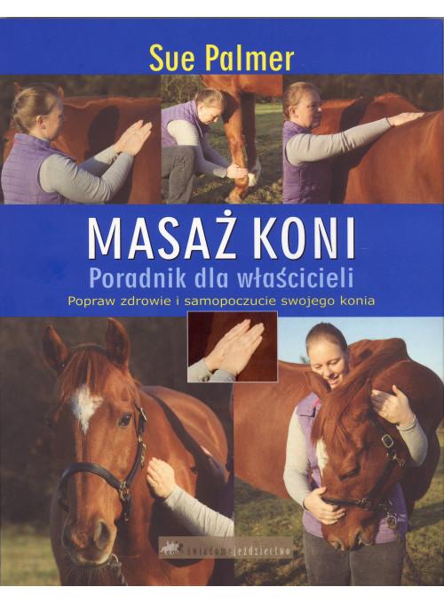Masaż koni