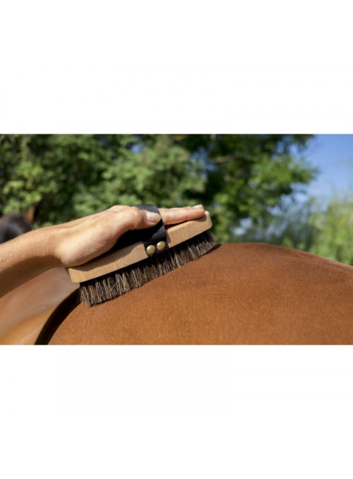 Szczotka Hippotonic Extra Soft Brush