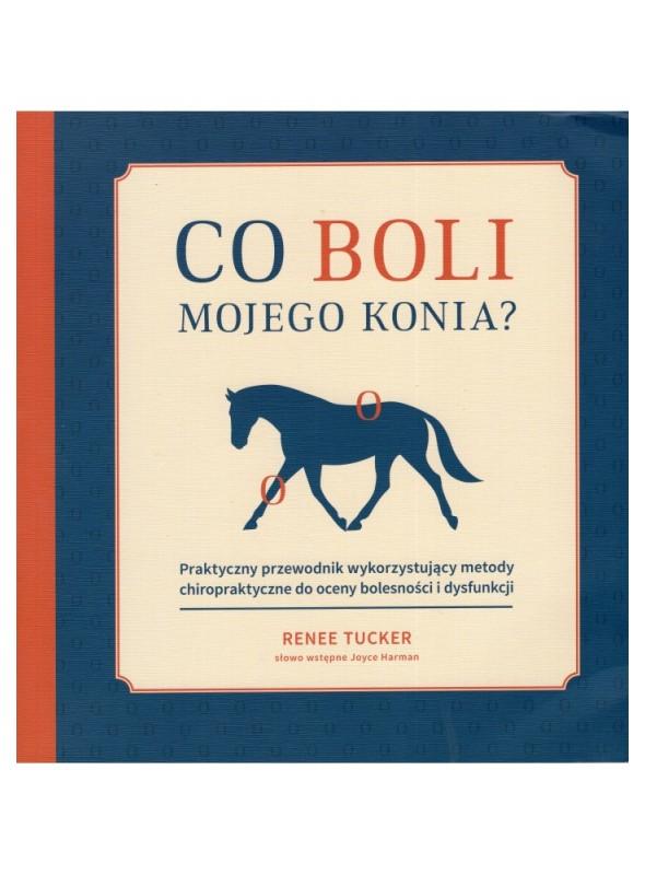 Książka Co boli mojego konia