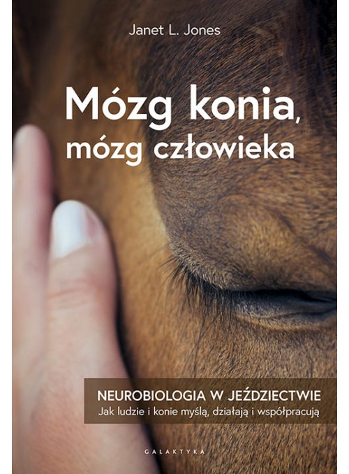 Książka Mózg konia, mózg człowieka