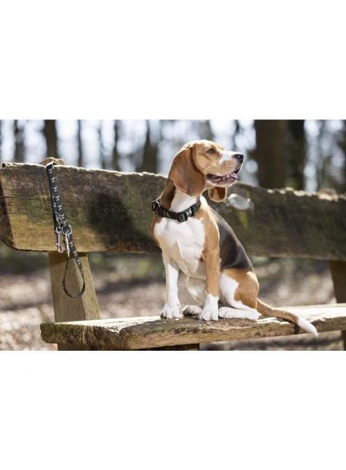 Smycz Beagle