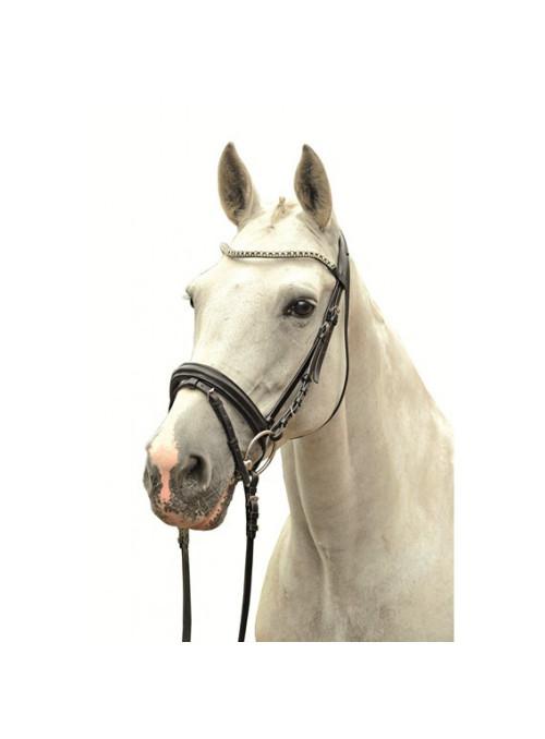 Naczółek Jule pony