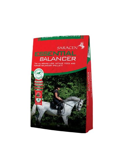 Saracen Essential Blancer 20 kg