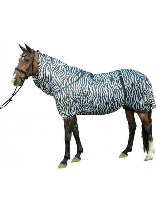 Derka siatkowa Zebra