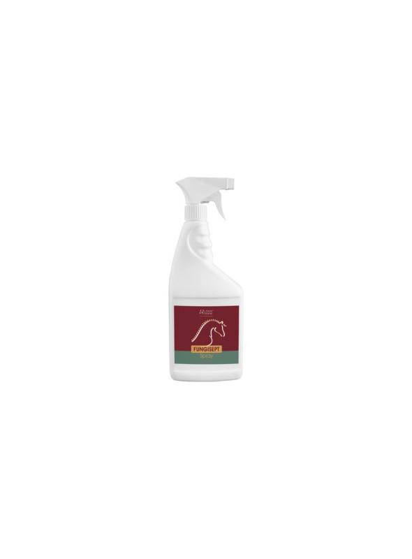 Spray przeciw grzybicy FUNGISEPT SPRAY 500 ml