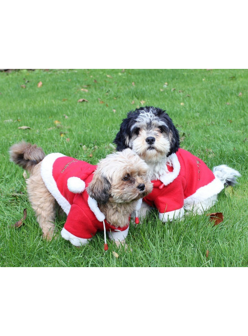 Ubranko świąteczne dla psa