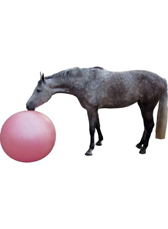 Duża piłka dla konia